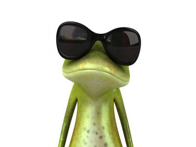 Frog with sunglasses ready to learn Slovenian